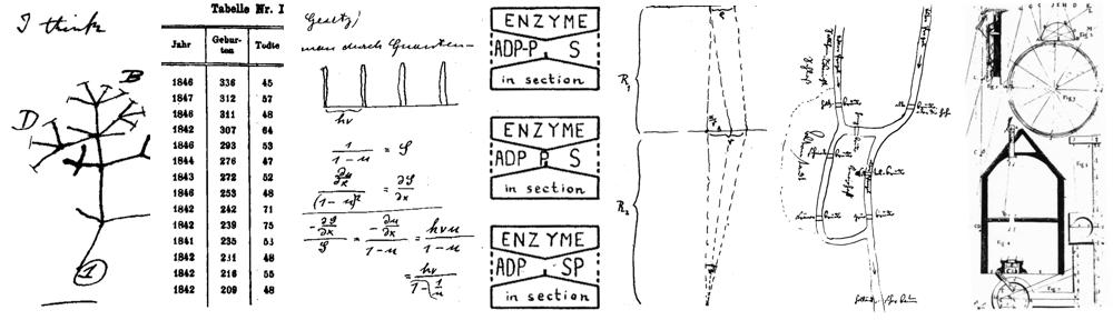 Rigorous Kinetic Modeling and Optimization Study of a ...